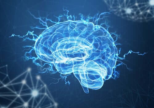 Neuroplastizität und posttraumatischer Stress: Kann das Gehirn ein Trauma überwinden?