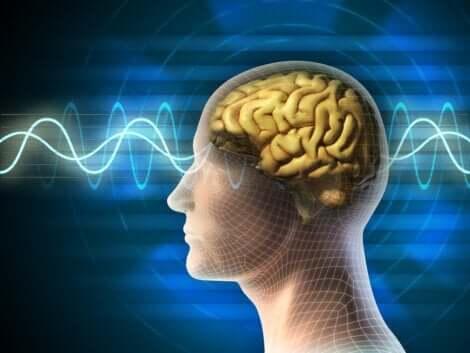 Schlafzyklus - Bild mit Gehirnwellen