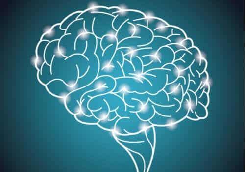 The Great British Intelligence Test - Das weltgrößte Experiment über die Intelligenz