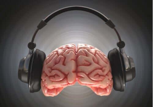 Binaurale Beats - Gehirn mit Kopfhörer