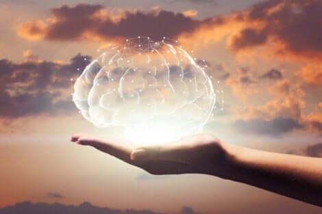 Marilyn vos Savant - Gehirn in einer Hand