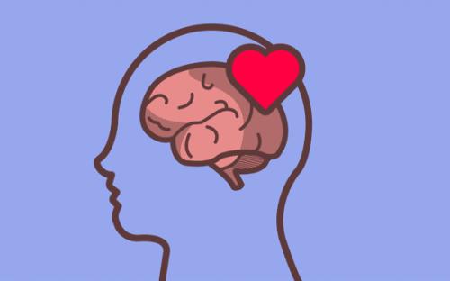 emotionale Bildung - Herz und Gehirn