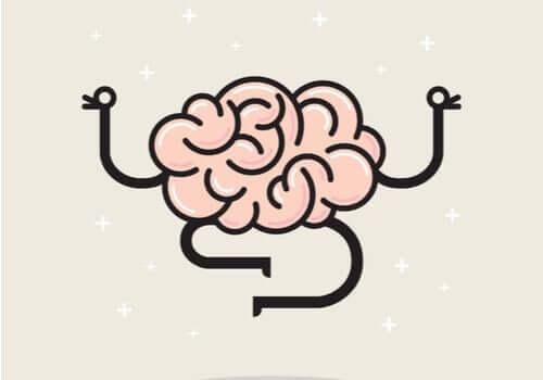 Das Gehirn fühlt keine Schmerzen - warum ist das so?
