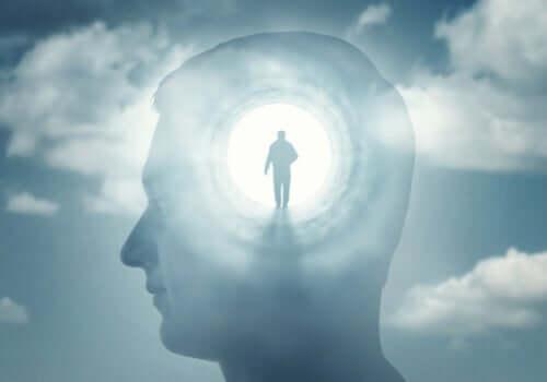 Bewusstseinsstörungen: Die Psychopathologie des Bewusstseins