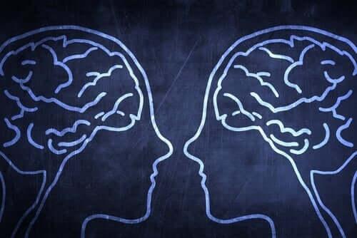 Das soziale Gehirn: Inwiefern verschafft es den Menschen einen evolutionären Vorteil?