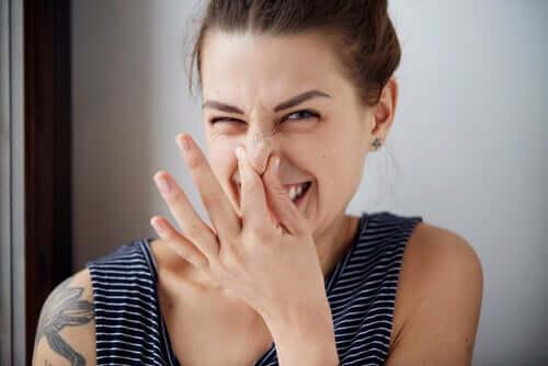 Die Psychologie des Geruchs: Drei Düfte, die Einstellungen verändern