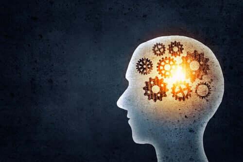 Welche Vorzüge bietet ein Gedächtnistraining?