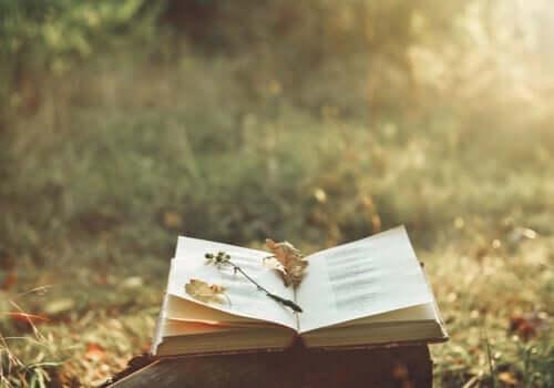 Die Magie der Poesie und wie sie Schmerzen lindern kann
