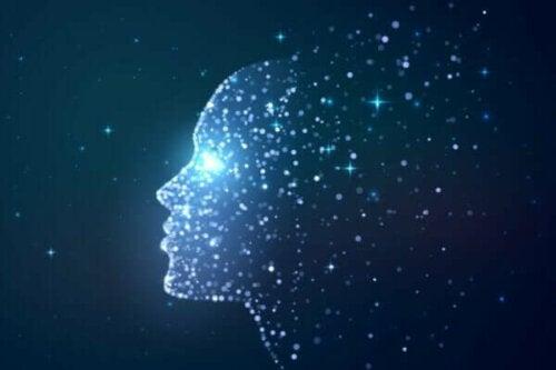 Ist das Bewusstsein ein Produkt des Gehirns?