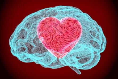 Die Kraft der emotionalen Selbstregulation
