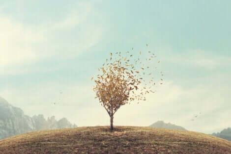 Steigerung des Selbstwertgefühls - frei stehender Baum