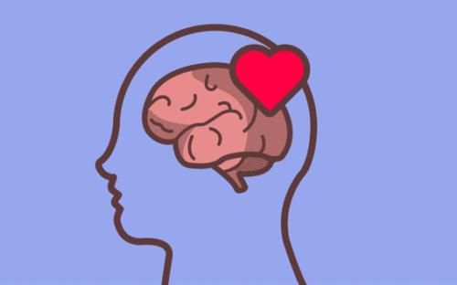 Selbstregulation - Gehirn mit Herz