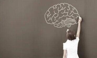 Warum Psychologen bei Kindern den WISC-Intelligenztest nutzen
