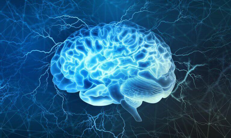 Schlafapnoe - erleuchtetes Gehirn