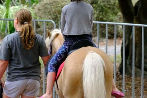 Pferdegestützte Therapie: Alles Wissenswerte!