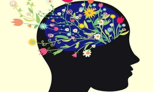 Kannst du dein Gehirn trainieren, glücklich zu sein?