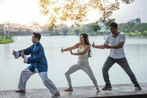 Qigong (Chi Kung) - Eigenschaften und Praxis