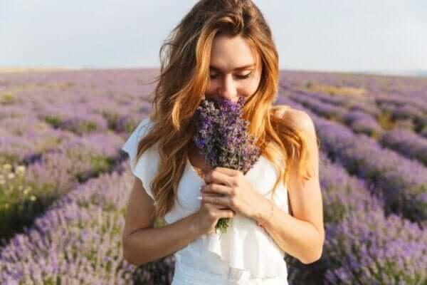 Das olfaktorische Gedächtnis: Wie funktioniert es?