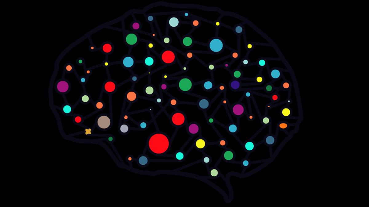 Ein Gehirn mit Farben