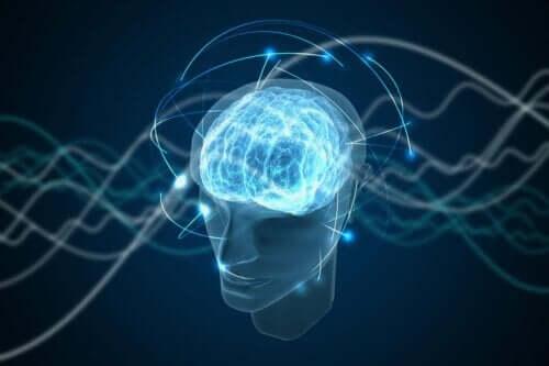 Die Emotion arbeitet mit einer Vielzahl von Daten in einem größeren Maßstab