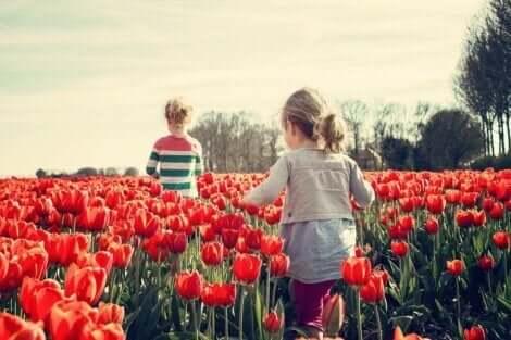 sozio-emotionale Fähigkeiten - Kinder in Tulpenfeld