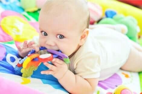 Sensorische Entwicklung - Baby beißt in Spielzeug