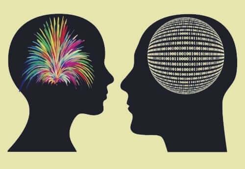 Mit dem Herzen wahrnehmen - zwei unterschiedliche Gehirne