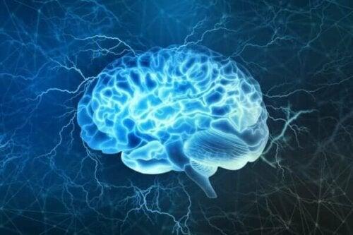 Ein leuchtendes Gehirn