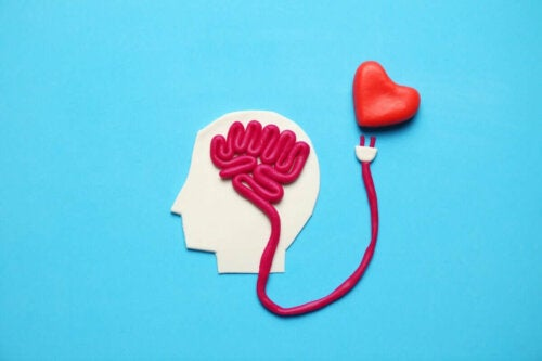 Ein Gehirn und ein Herz