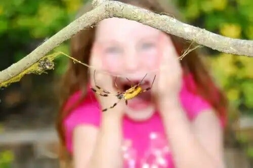 Ein Kind hat panische Angst vor einer Spinne.