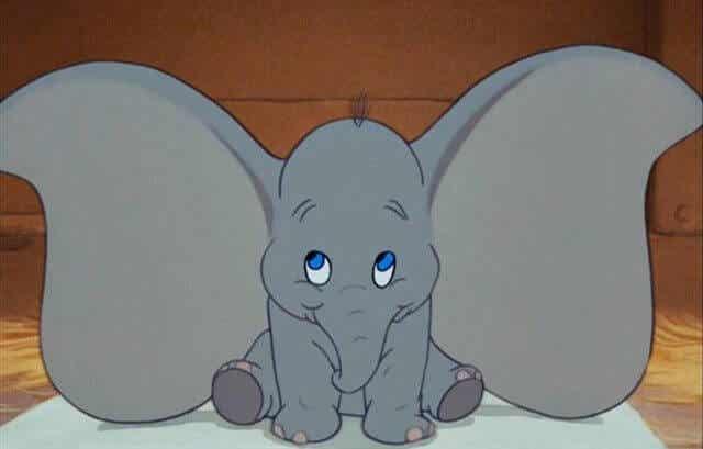 der kleine Dumbo
