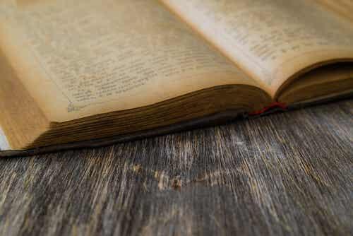 Pierre Teilhard de Chardin und seine Schriften