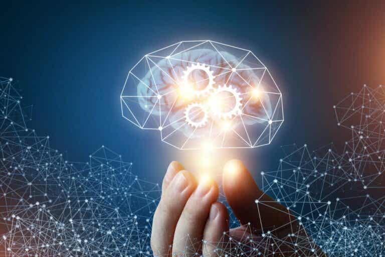 Fluide und kristalline Intelligenz: 4 Unterschiede