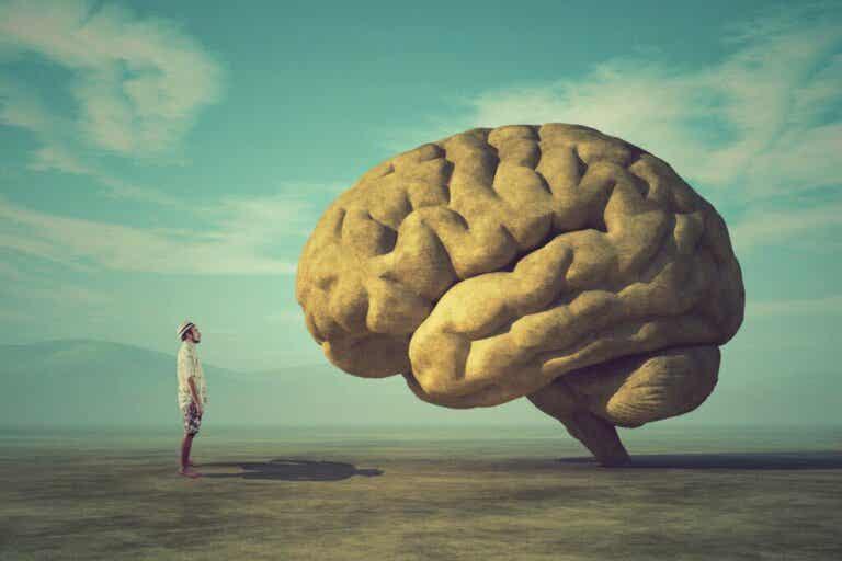 Warum konzentriert sich unser Gehirn auf Negatives?