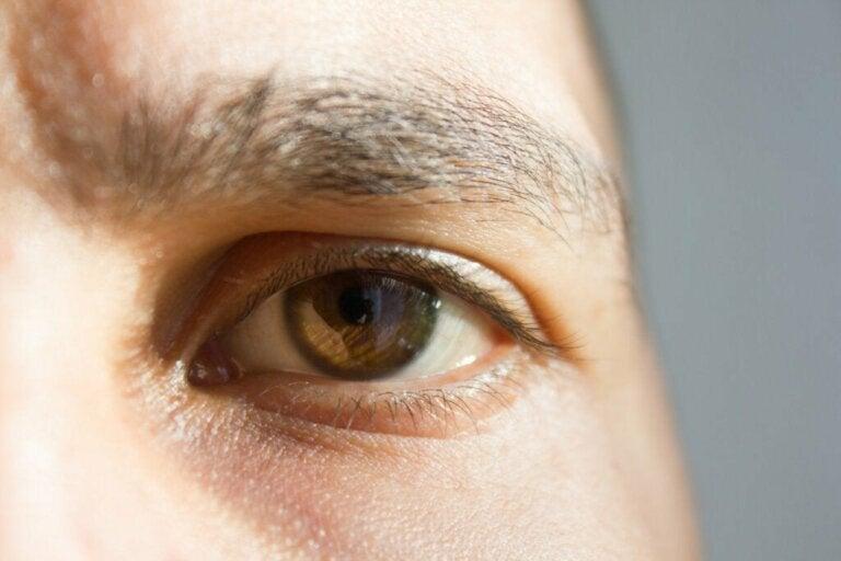 Sinneswahrnehmung: 7 kuriose Fakten