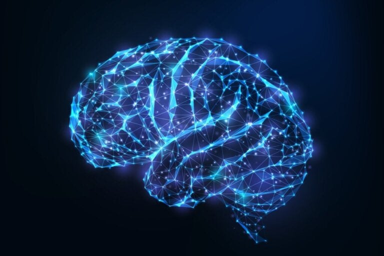 Androgynie des Gehirns: Was ist das und welche Vorteile hat sie?