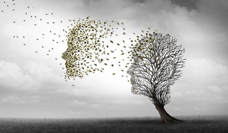 Die Unterschiede zwischen Alzheimer und Demenz
