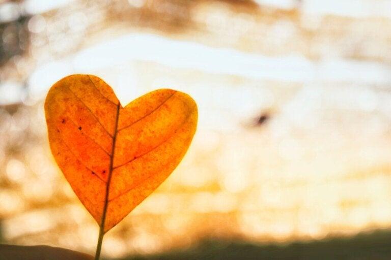 Mit bedingungsloser Liebe eine Trennung überwinden