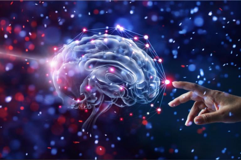 Die instinktiven Emotionen: der Ursprung unseres Bewusstsein